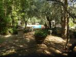 View of the pool and the gardens, squirrels and pheasants running around