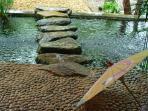 Stone Steps Over the Koi Pond