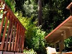 Bonne Chere, Lovely Deck along the Russian River Valley