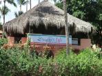 D'Angelo's Pizzeria in Los Corales