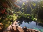swimming pool level