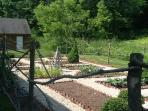 View of parterre vegetable garden in early spring