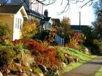 Neighbourhood of character homes