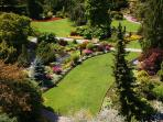 Queen Elizabeth Park also walking distance
