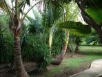 Lush Landscaped Grounds