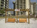 Sunbird Beach Swings