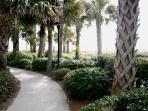 Winding Path To Beach