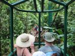 Rainforest Gondola Ride...Spectacular