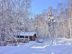 Cabin Driveway - January 2014