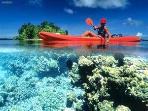 KAYAK TO MAUI'S BEST SNORKEL SPOTS
