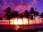Take time to watch a Maui Sunset  Aloha :)