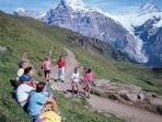 Alpine Walking