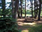 Black Moshannon State Park Picnic Area