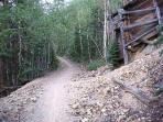 BIKE TRAIL IN SILVER PLUME