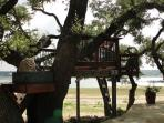 Tree House with Views for Miles!