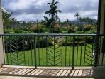 Your view from the main lanai
