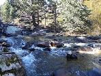 Middle St. Vrain River Enjoy free fishing on this river-bordering property