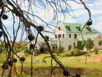 Peace Valley Guesthouse - Napier - Western Cape - 4* TGCSA accredited B&B accommodation