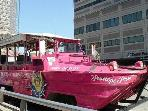 Near Boston Duck Tours-your tour guide will drive you into the Charles River!