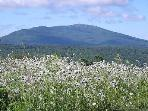 Summer View of Mount Monadnock