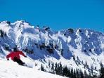 Sugar Bowl Ski Resort - 45 minutes Away