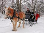 Sleigh rides for couples and groups-right outside your door