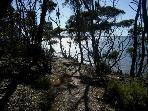 Wander the serene Cannery Walk