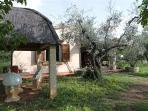34450-Holiday house Cecina