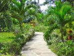 beach house garden walking path