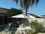 Backyard patio w/ palm trees