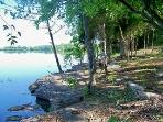 Lake side in the Morning