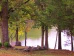 Our Lake side...so peaceful and a great place to fish or read a book
