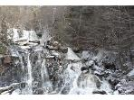 Nearby falls - 10 minutes away
