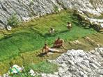 A bath in cristal clear water in the Apennines