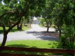 garden, parking