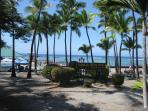 Kahaluu Bay for unbeatable snorkeling with tropical fish and sea turtles; 10 min. drive from condo.