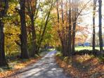 One of Many Local Country dirt roads - Perfect for Exploring Especially During Foliage Season