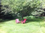 Adirondack chairs on lawn under apple tree