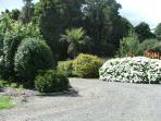 Lisnagarvey Gardens