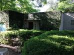 Modern Zilker 2 bdr - 2 months July + Aug - All Glass In Back: Walk to Barton Springs Pool!