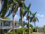 Eden Villa - walk to beach in 5 mins and free wif