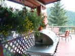 front deck with BBQ and lounge chairs amidst a sea of flowers