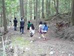 Hiking in the forest on the property