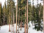 White Wolf View Breckenridge Lodging