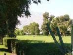 Adjacent to Tahquitz Golf Course
