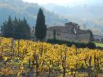 Autumn colours near San Gimignano