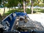 Pool side lounge