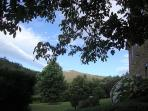 jardín y vistas