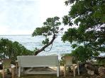 Foliage opens up to the beach. Chairs/bench available for your use... Return to save from high tide.
