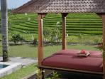 Bale Bengong View